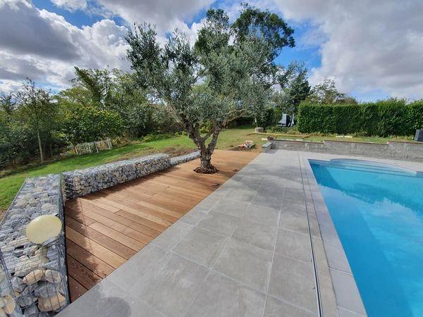 réalisation d'un olivier implanté dans une terrasse en bois devant une piscine, vue d'un troisième angles